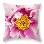 Pink Peony Flowers Series 3 Throw Pillow