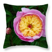 Pink Peony Flowers Series 4 Throw Pillow