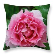 Pink Peony Flowers Series 7 Throw Pillow