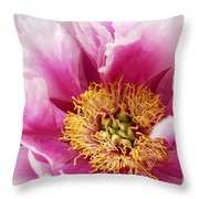 Pink Peony Flowers Series 8 Throw Pillow