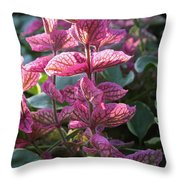 Pink Periwinkle Throw Pillow