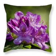 Pink Petals On The Trail Throw Pillow