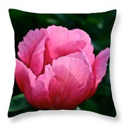 Pink Pink Pink Throw Pillow