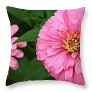 Pink Posy Pano Throw Pillow