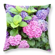 Pink Purple Hydrangeas Throw Pillow