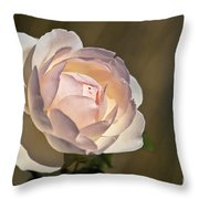 Pink Rose Blossom Throw Pillow
