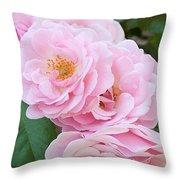 Pink Roses II Throw Pillow