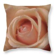 Pink Sensual Rose Throw Pillow