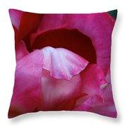 Pink Silk Throw Pillow