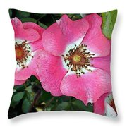 Pink Single Roses Throw Pillow