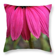 Pink Skirts Throw Pillow