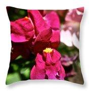 Pink Snap Throw Pillow