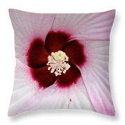 Pink Swirl Hibiscus Throw Pillow
