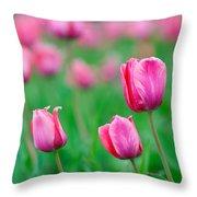 Pink Tulip Bed Throw Pillow