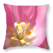 Pink Tulip Flower Prints Spring Tulips Floral Throw Pillow by Baslee Troutman