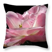 Pink Tulip Isolated Throw Pillow