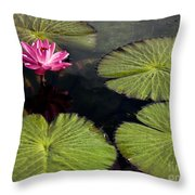 Pink Water Lily I Throw Pillow