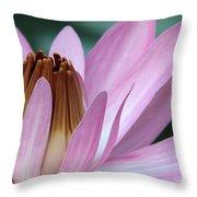 Pink Water Lily Macro Throw Pillow