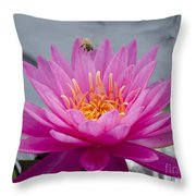 Pink Water Lily Rose Arey With Bee Throw Pillow
