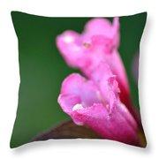 Pink Weigela Throw Pillow