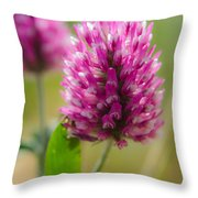 Pink Wildflower Throw Pillow
