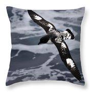 Pintado Petrel - Ancient Mariner Throw Pillow