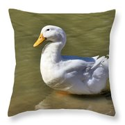 Pintail Throw Pillow
