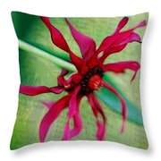Pinwheel Throw Pillow