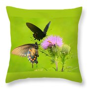 Pipevine Swallowtails In Tandem Throw Pillow