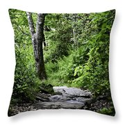 Pisgah Path Throw Pillow