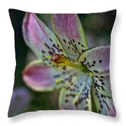 Pistil Powered By Stamen Throw Pillow