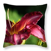 Pistons Of The Pink Yellow Lily Throw Pillow