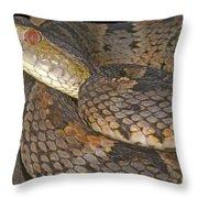 Pit Viper Throw Pillow