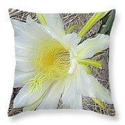 Pitaya Flower Throw Pillow