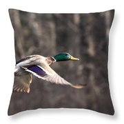 Places To Go Throw Pillow