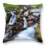 Plaikni Falls Throw Pillow