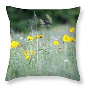 Plains Yellow Daisy Throw Pillow
