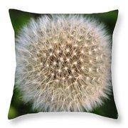 Planet Dandelion Throw Pillow