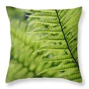 Plant Detail, Close Up Throw Pillow