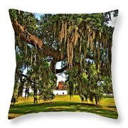 Plantation Throw Pillow by Steve Harrington