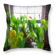 Planter In France Throw Pillow