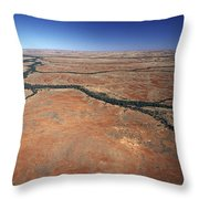 Plants Grow Along Desert River Drainage Throw Pillow