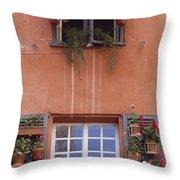 Plants On Window Sill Throw Pillow