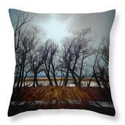 Plastic Wind  Throw Pillow