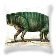 Plateosaurus Engelhardti, A Prehistoric Throw Pillow