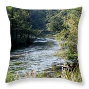 Platte River Throw Pillow