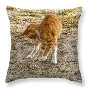 Playful Yellow Kitty Throw Pillow