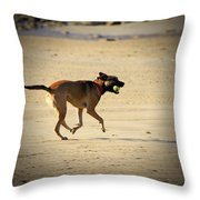 Playing Ball On The Beach  Throw Pillow