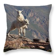 Playtime On The Brink Throw Pillow