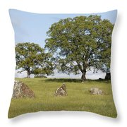 Pleasant Hillside Throw Pillow